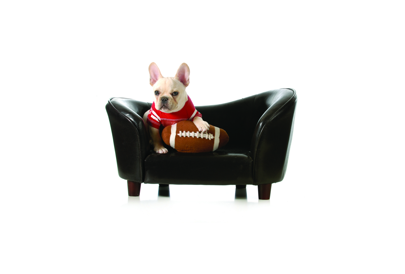 Women's Pigskin Fantasy Football League